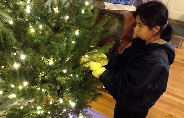 Yoli christmastree